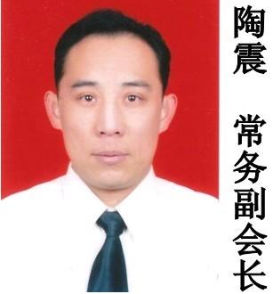 常务副会长-陶震